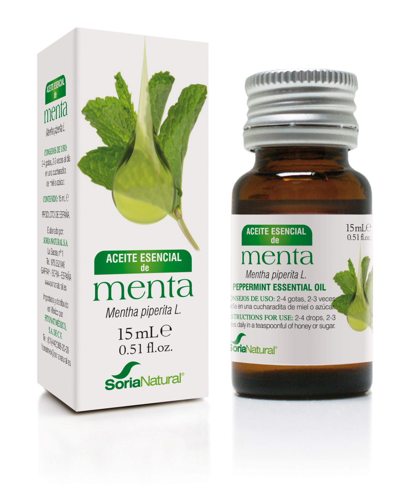 Mentha piperita