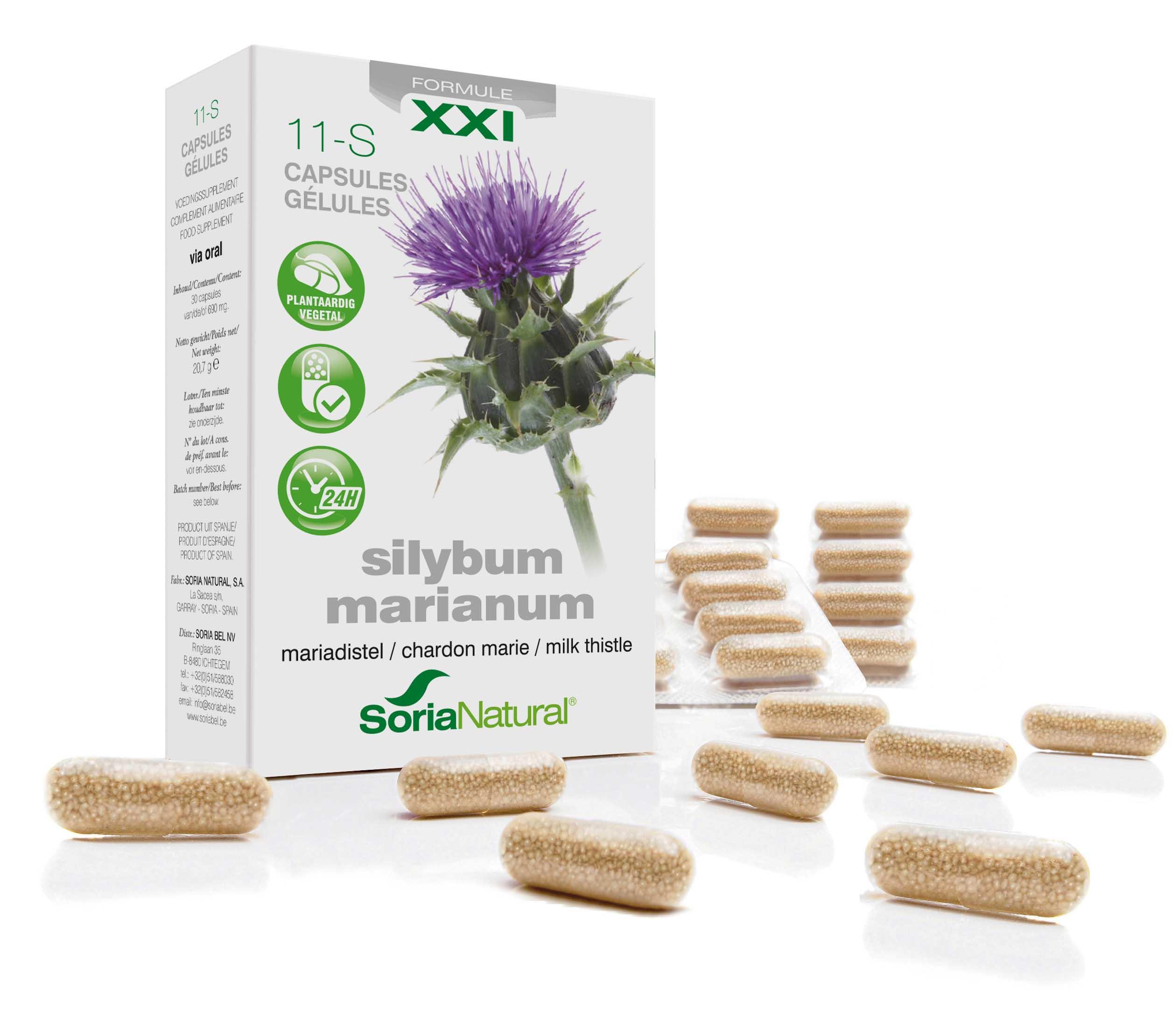 11-S Silybum marianum XXI: mariadistel 300 mg