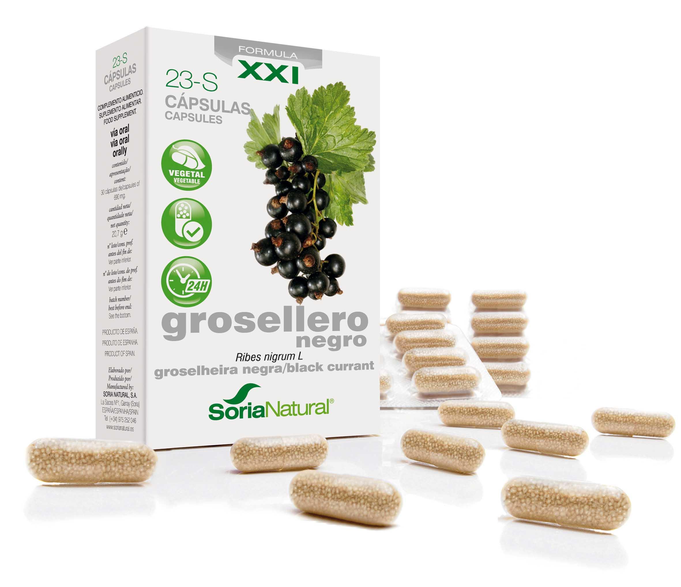 23-S Ribes nigrum XXI: zwarte bes 287 mg