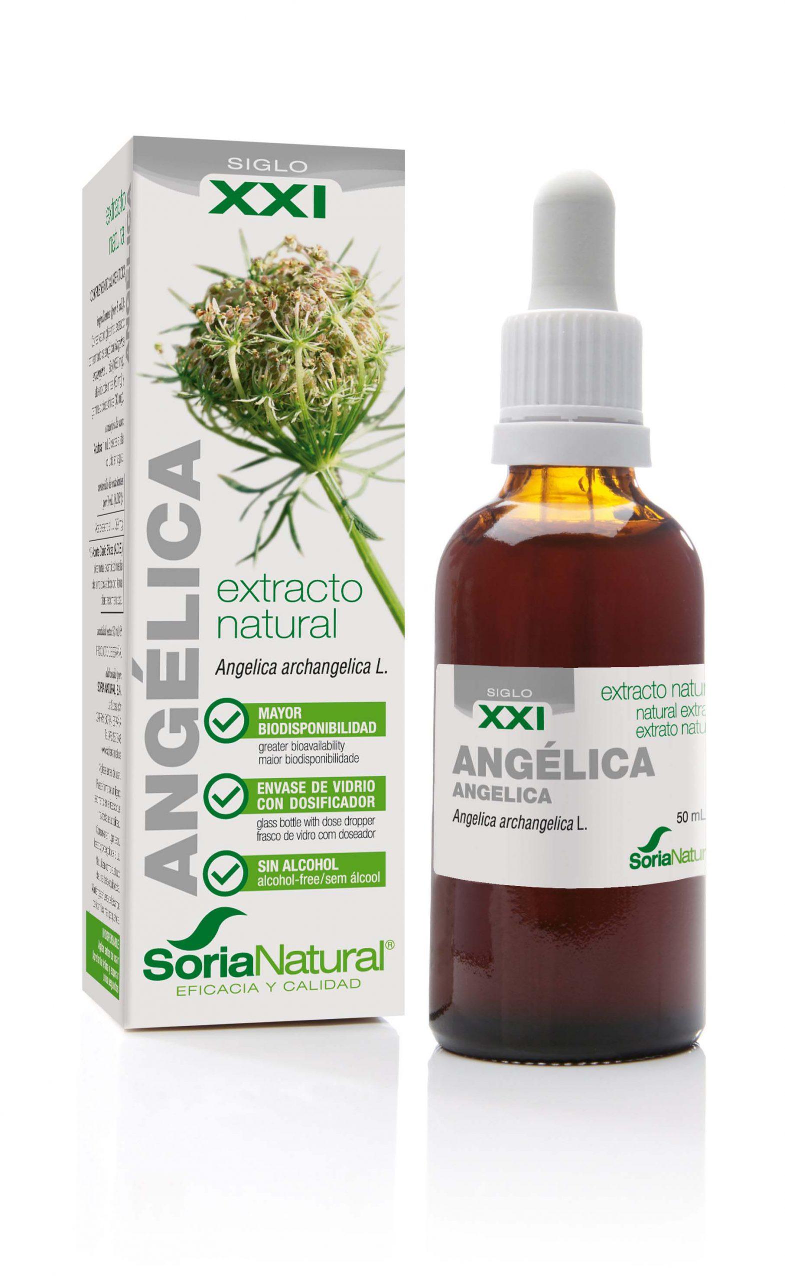 Angelica archangelica XXI extr. fl.