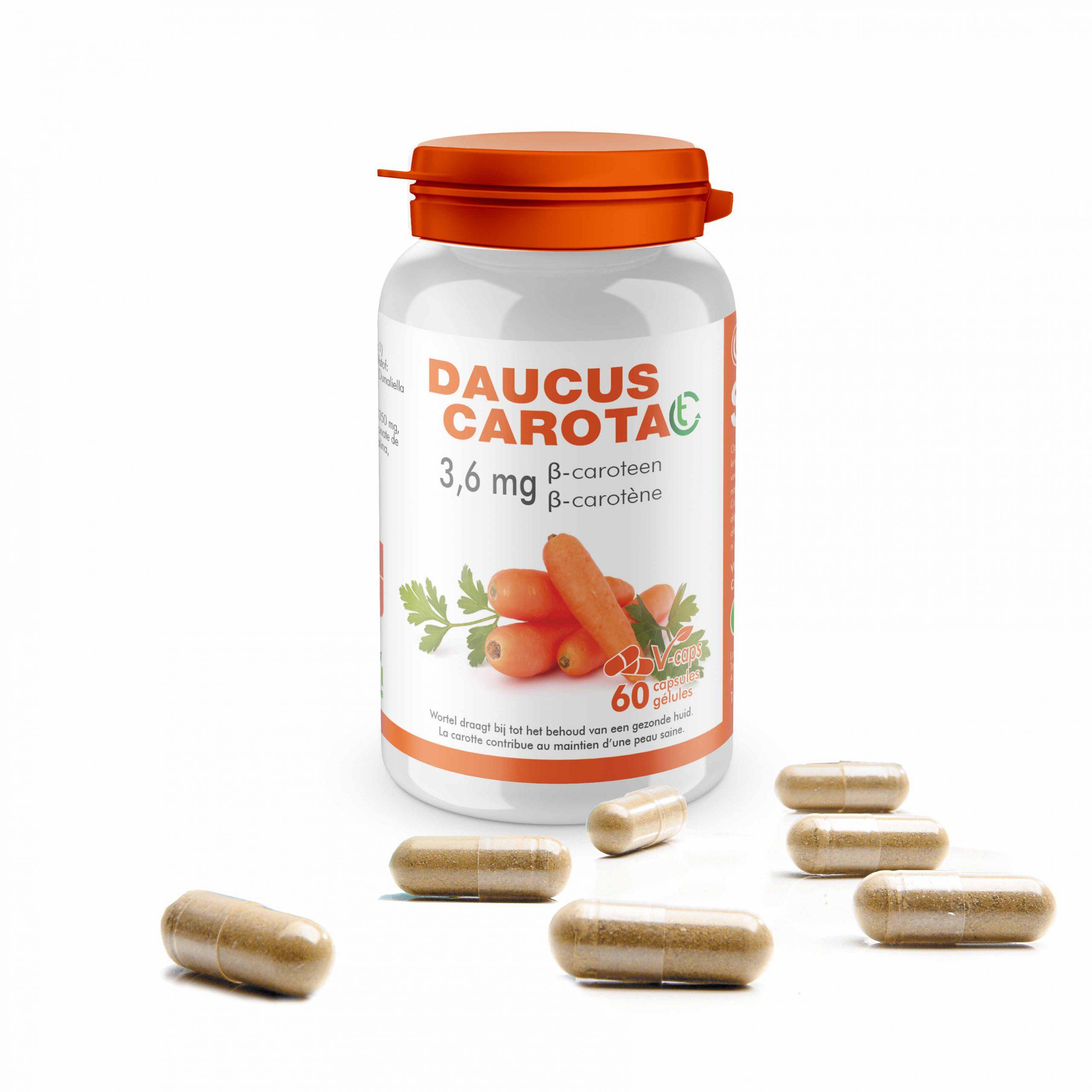 Daucus carota CT